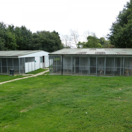 Kennels & Cattery Business with 2 x 4 Bedroom Homes in 3 1/2 acres of land near Colchester