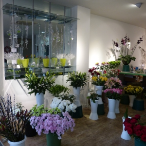 Long Established Florist Business in Colchester